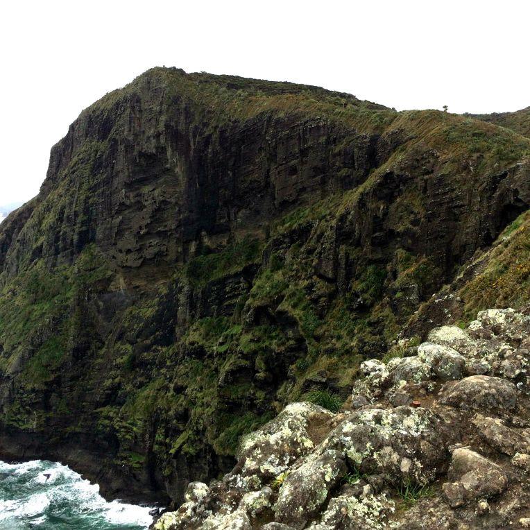 piha-cliff
